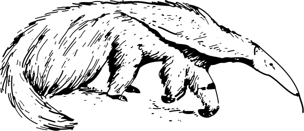 Free Anteater Clipart