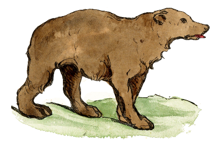 Free Young Bear Clipart