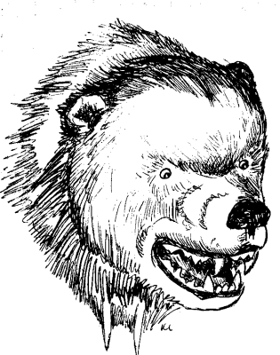Free Bear Coloring Page Clipart 1 Page Of Free To Use Images