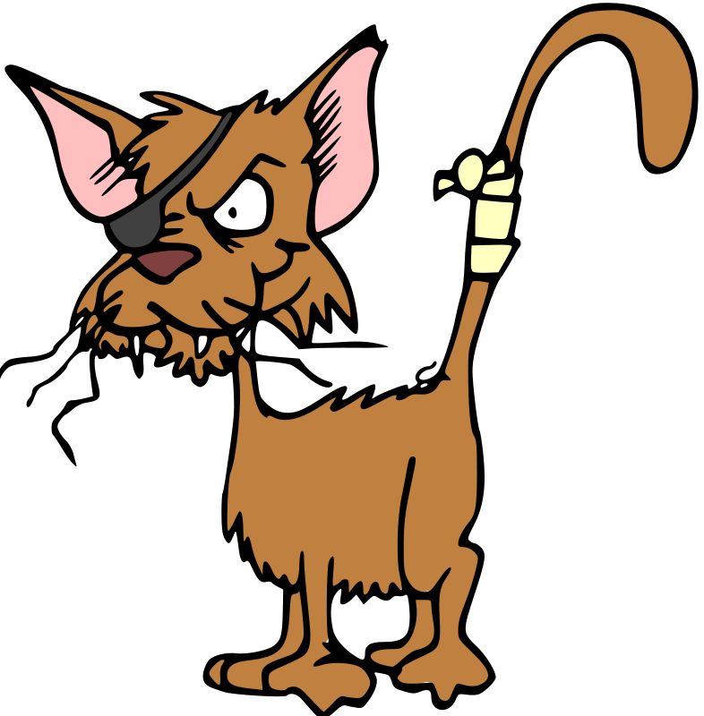 Free Pirate Cat Clipart