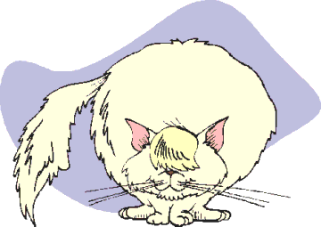 Free White Cat Clipart