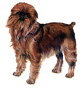 Free Dog Breeds G Clipart