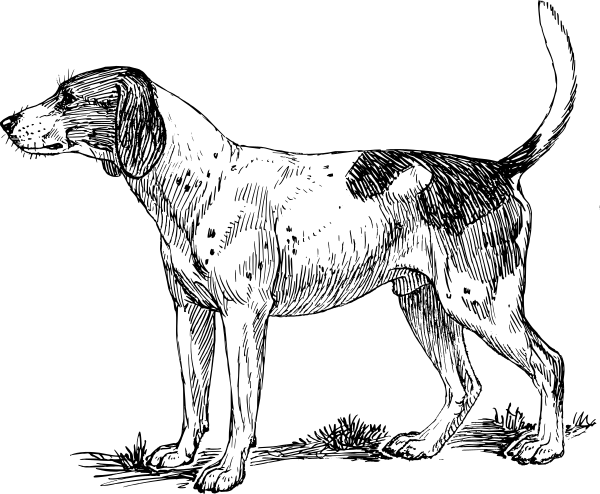 Free Dog Breeds H Clipart