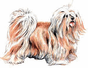 Free Dog Breeds L Clipart
