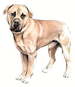 Free Dog Breeds M Clipart