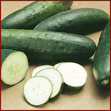 Free Cucumber Clipart