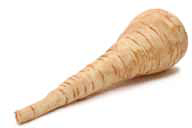 Free Parsnip Clipart